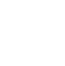 Denmark Technical College